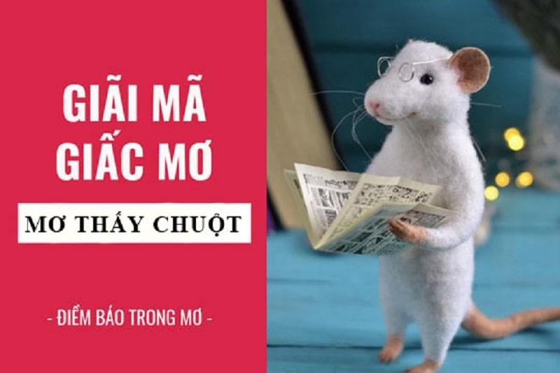 Giải mã giấc mơ thấy chuột