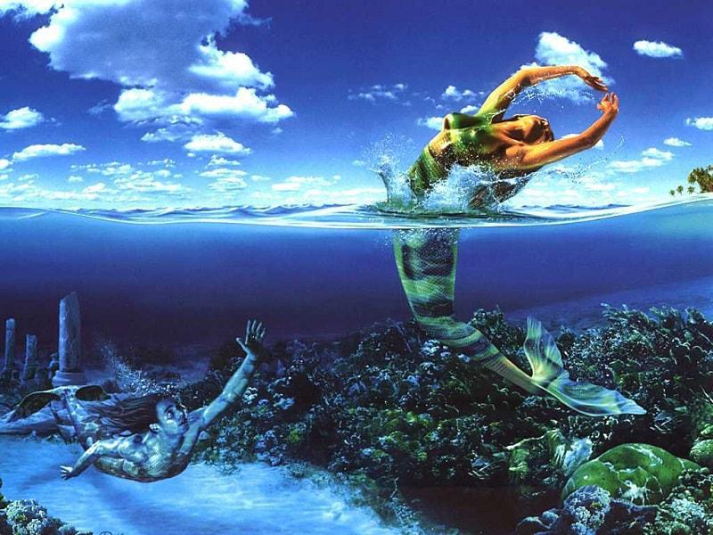 Hai con cá bơi ngược chiều biểu tượng cho 2 tính cách đối lập của cung Song Ngư