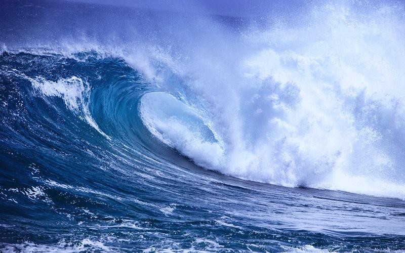 Mơ thấy biển có sóng dữ dội nghĩa là bạn đang bất mãn với cuộc sống