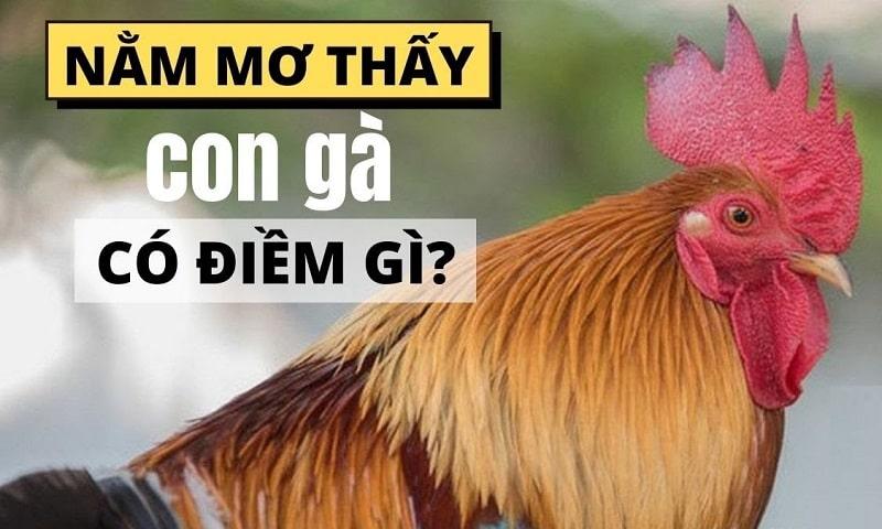 Mơ thấy gà có thể là điềm hên hoặc xui