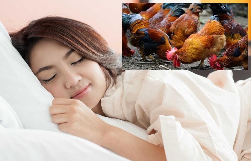 Mơ thấy gà mang đến nhiều ý nghĩa cho chúng ta