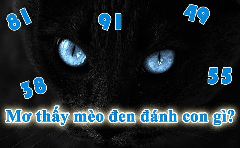 Mơ thấy mèo đen đánh con gì chắc ăn nhất