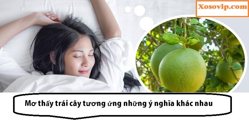 Nằm mơ thấy trái cây tùy từng loại sẽ có ý nghĩa khác nhau