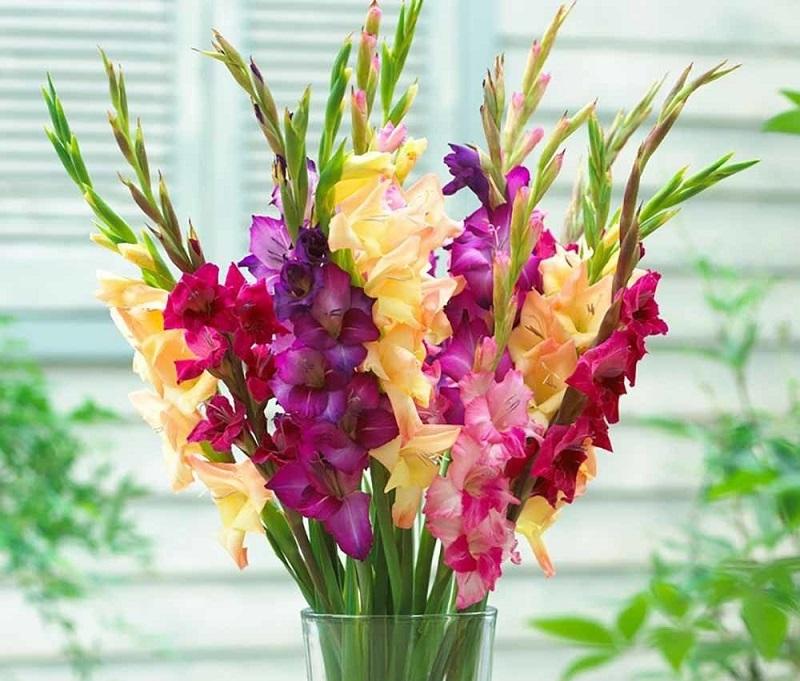 Nên chưng hoa tươi trên bàn thờ