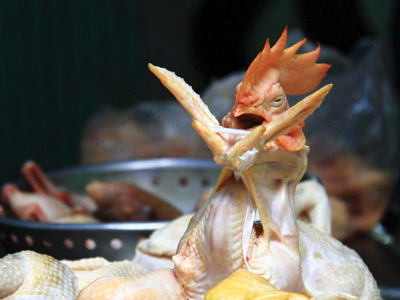 Cách làm gà cúng giao thừa đẹp