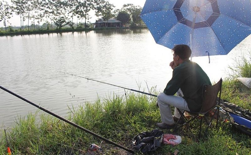 Tùy từng giấc mơ thấy câu cá sẽ ứng những con số may mắn khác nhau